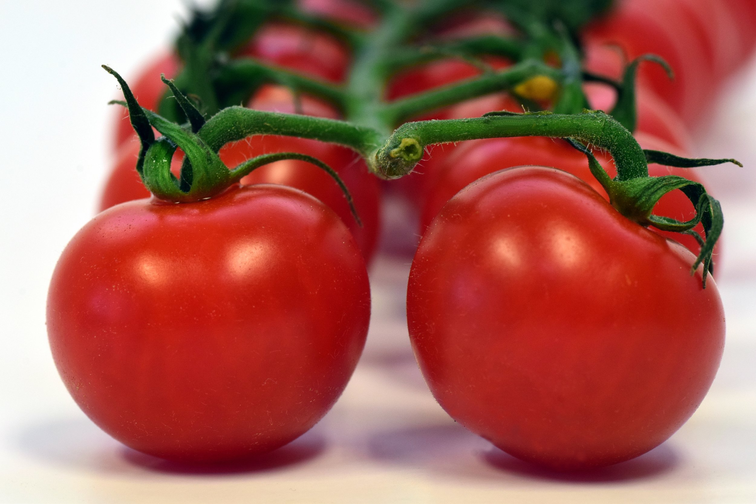 Lycopene gives tomatoes their bright red hue and makes this fruit a powerful aid in preventing cancer ( Pixabay.com photo )