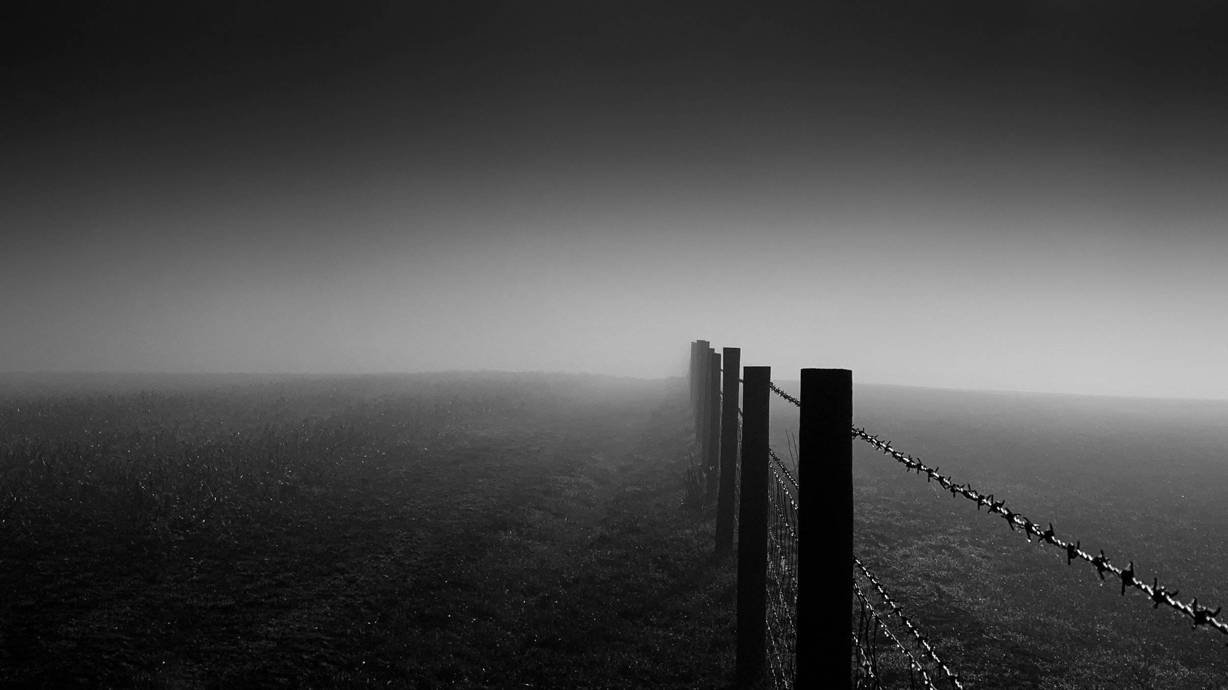 Fence into the mist