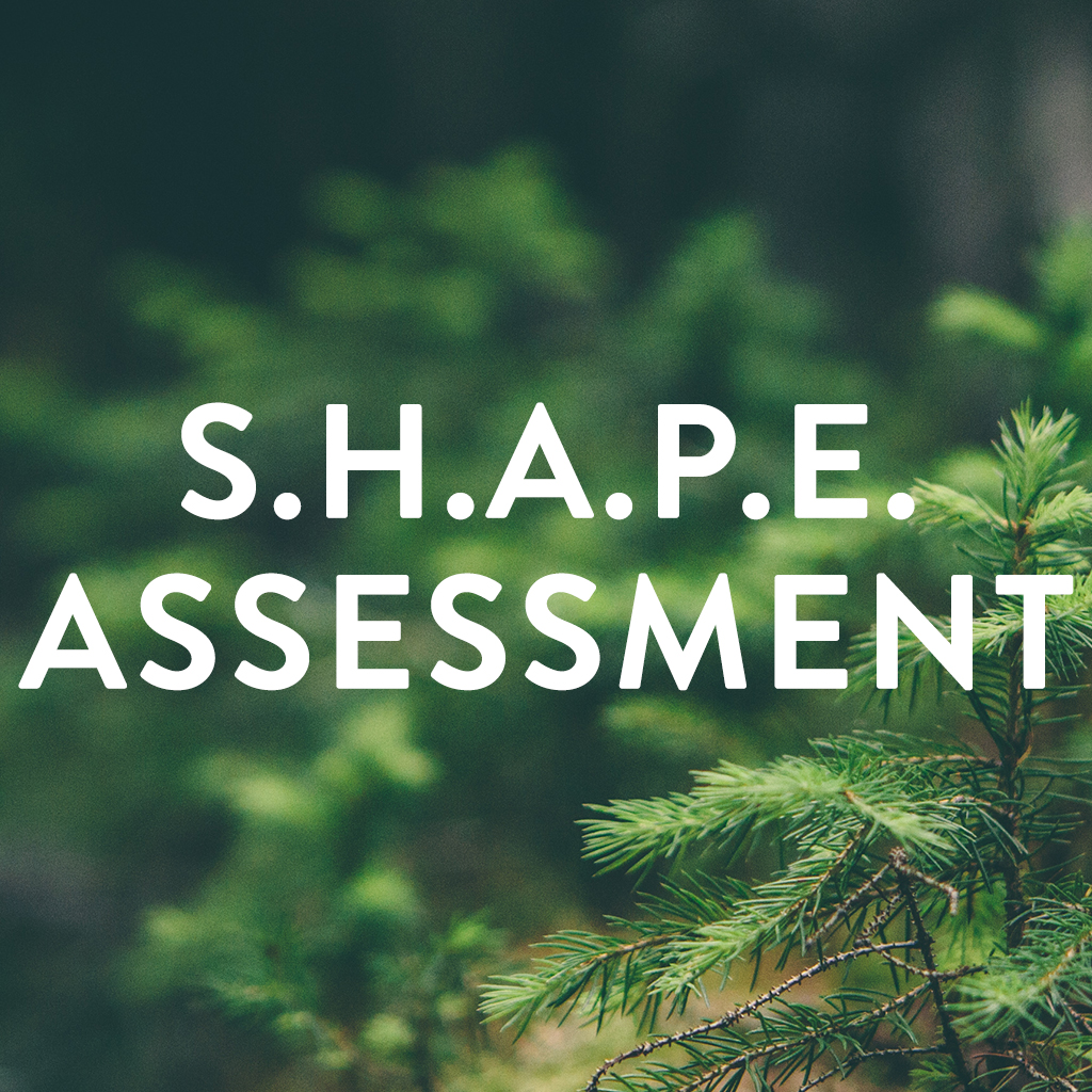 shape assessment_square.jpg