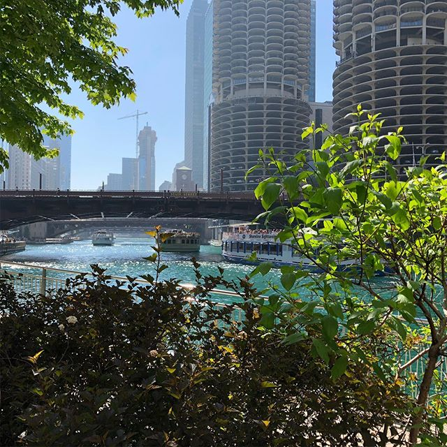 Chicago for the win.  Such a good place to visit in the summer. #chicago #river #pauljoynerphoto