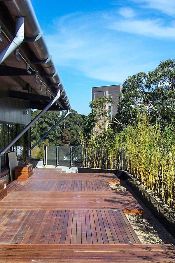 Macquarie University rooftop and outdoor area