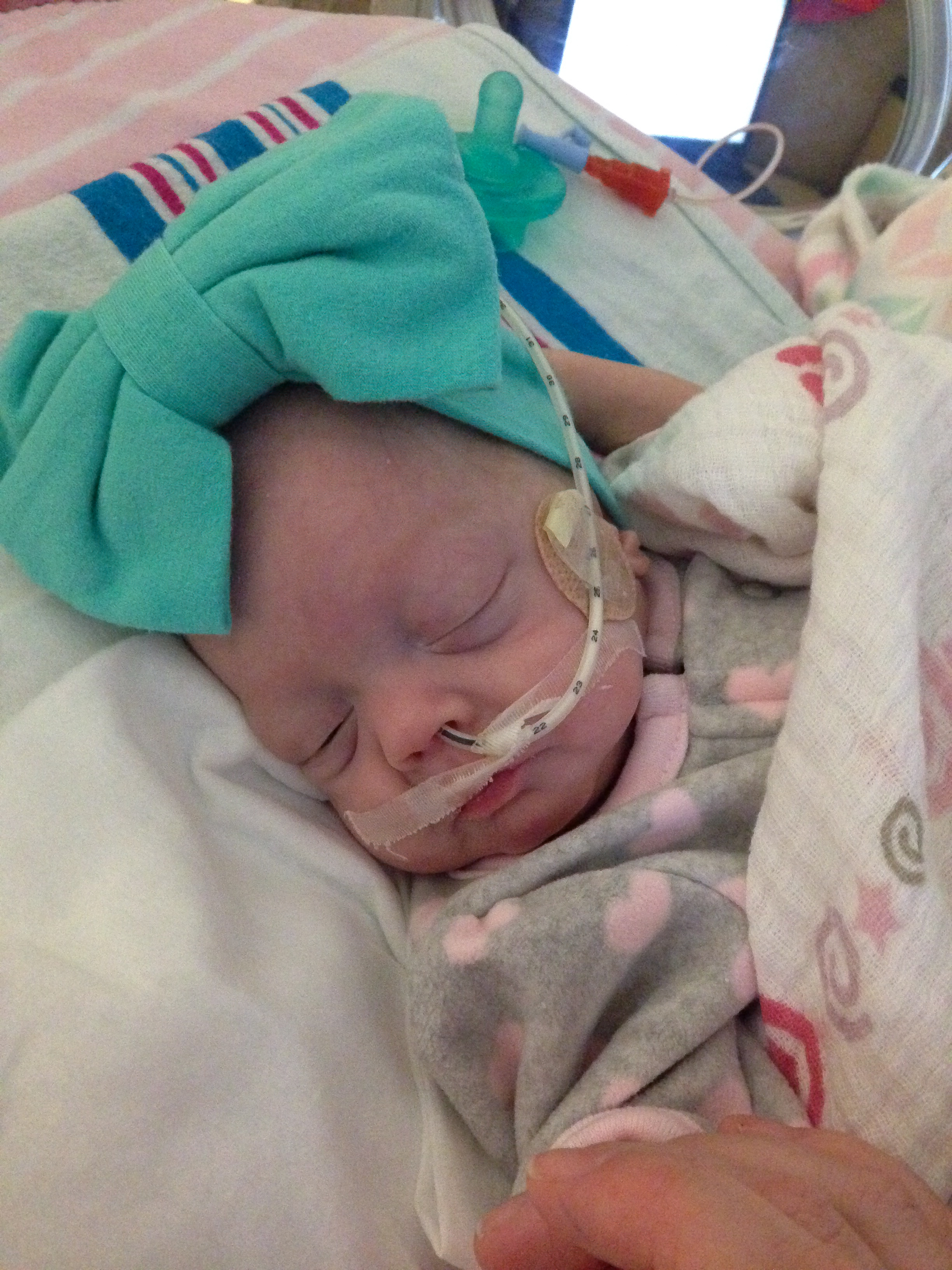 addie belle - diary of a NICU dad - day 79 - shegotguts.com-1.jpg