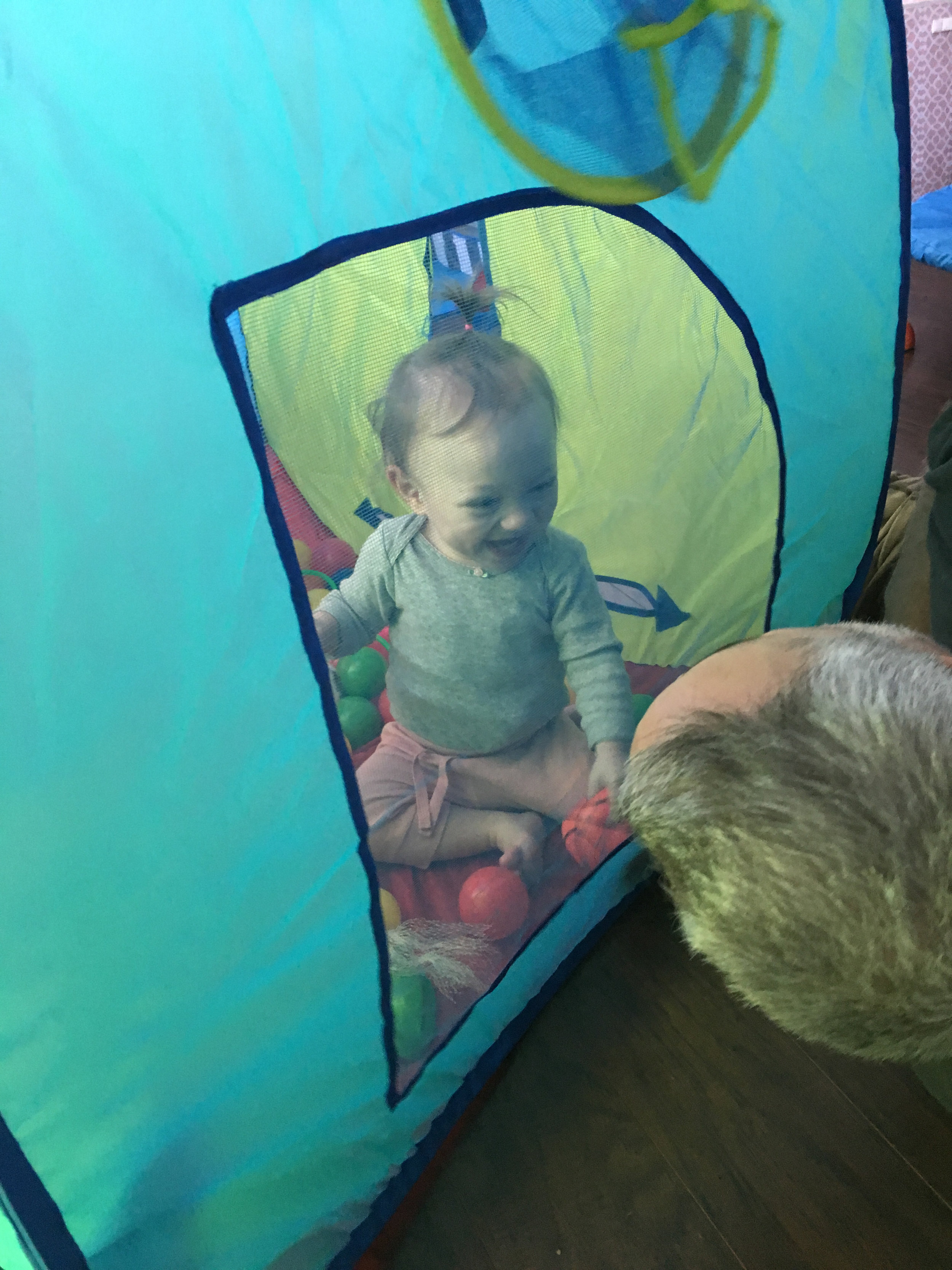 tent - We use a tent for so many things to build language. Adeline loves to relax in the tent and we do so calming activities in there. Most recently, we were pretending to go camping, we made a pretend fire, pretending to sleep in the tern, etc. A child go in the tent, out of the tent. We play peek-a boo with the doors in the tent, and its a good place to go when Adeline is a little overstimulated/sensory wise.