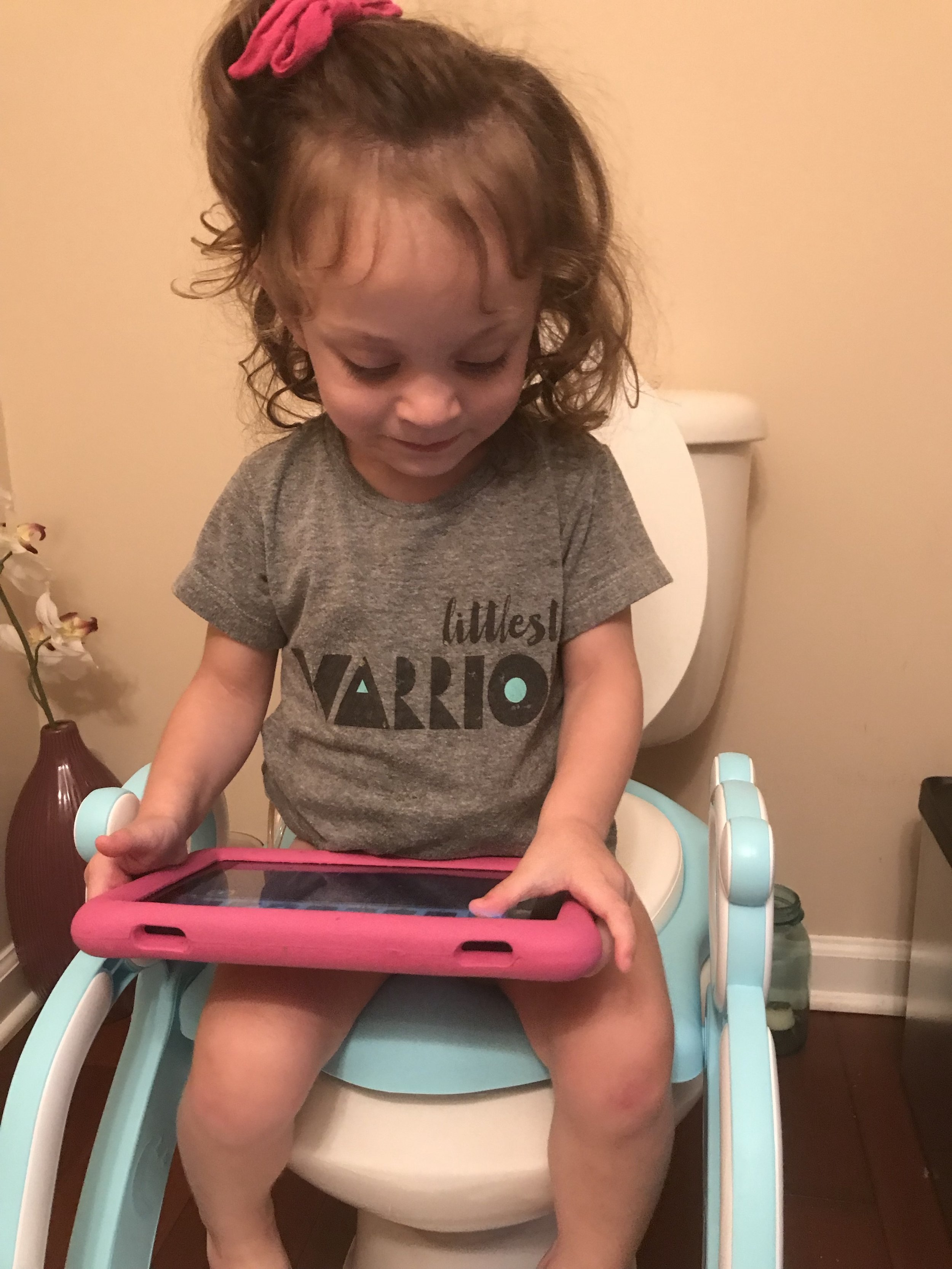 how to potty train in 3 days - www.shegotguts.com