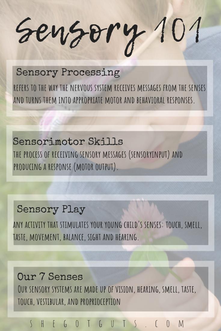 Basics of Sensory Processing by She Got Guts.png