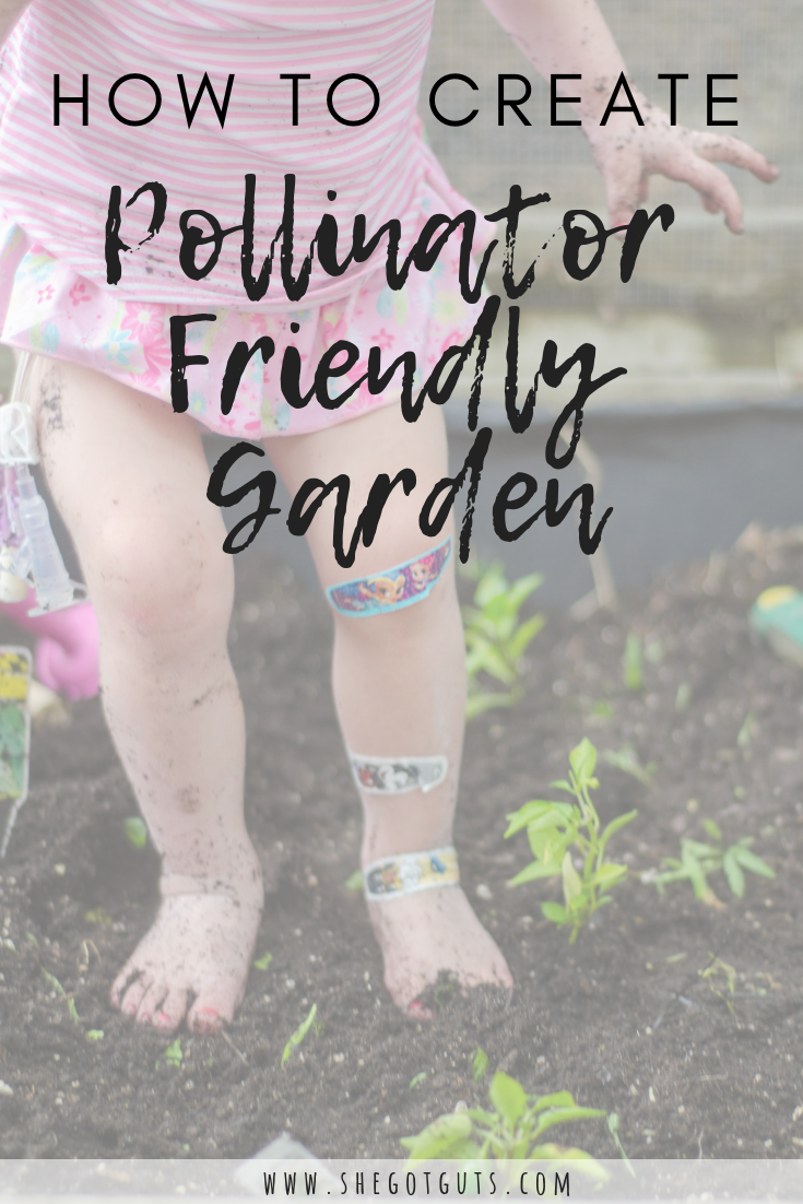 how to create - pollinator friendly garden - she got guts (1).png