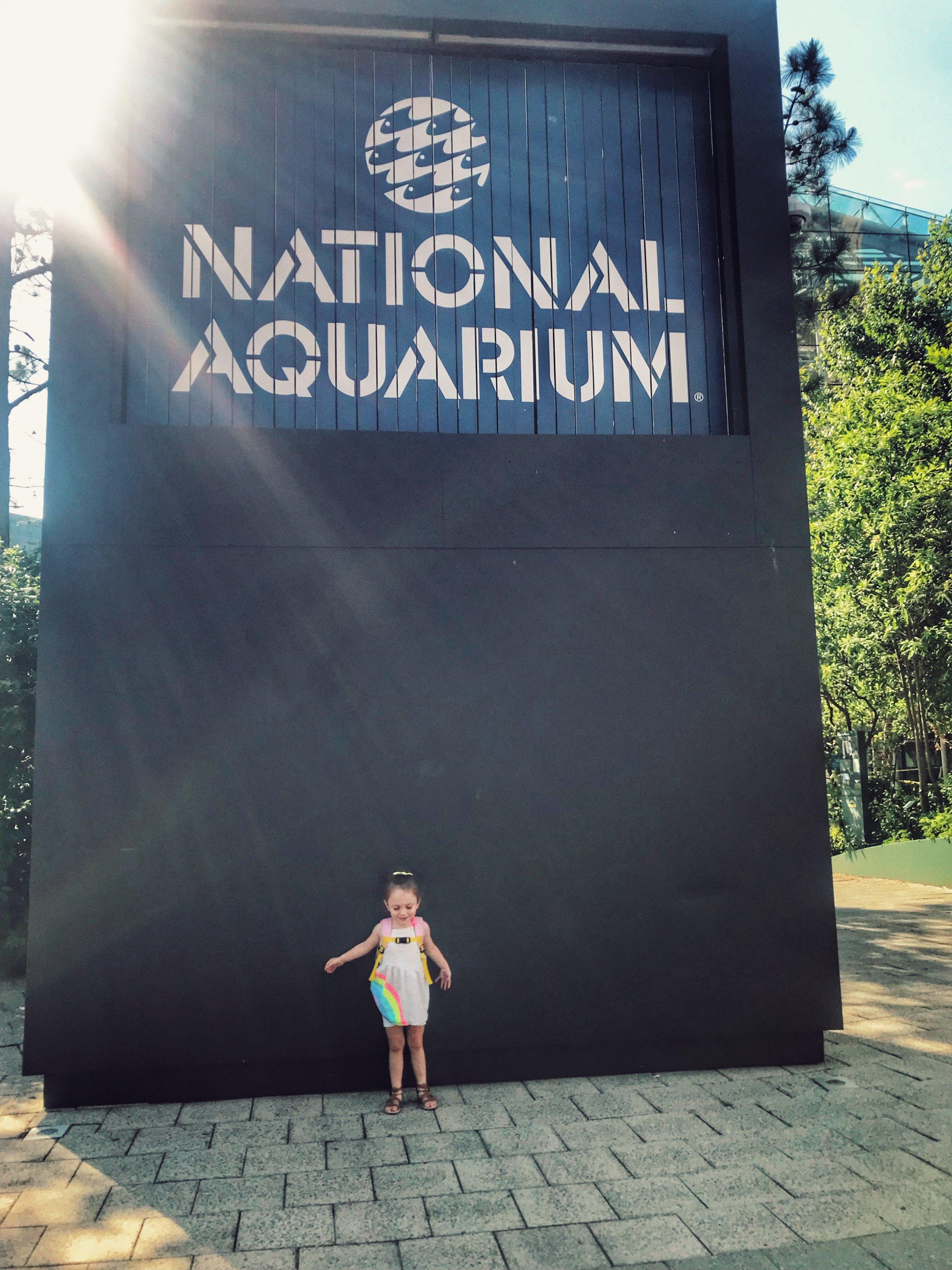 summer bucket list - naltional park - she got guts.jpg