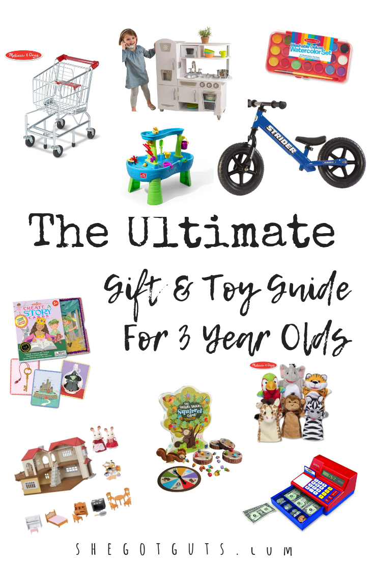 Ultimate Toy Guide for 3 Year Olds - By She Got Guts.png