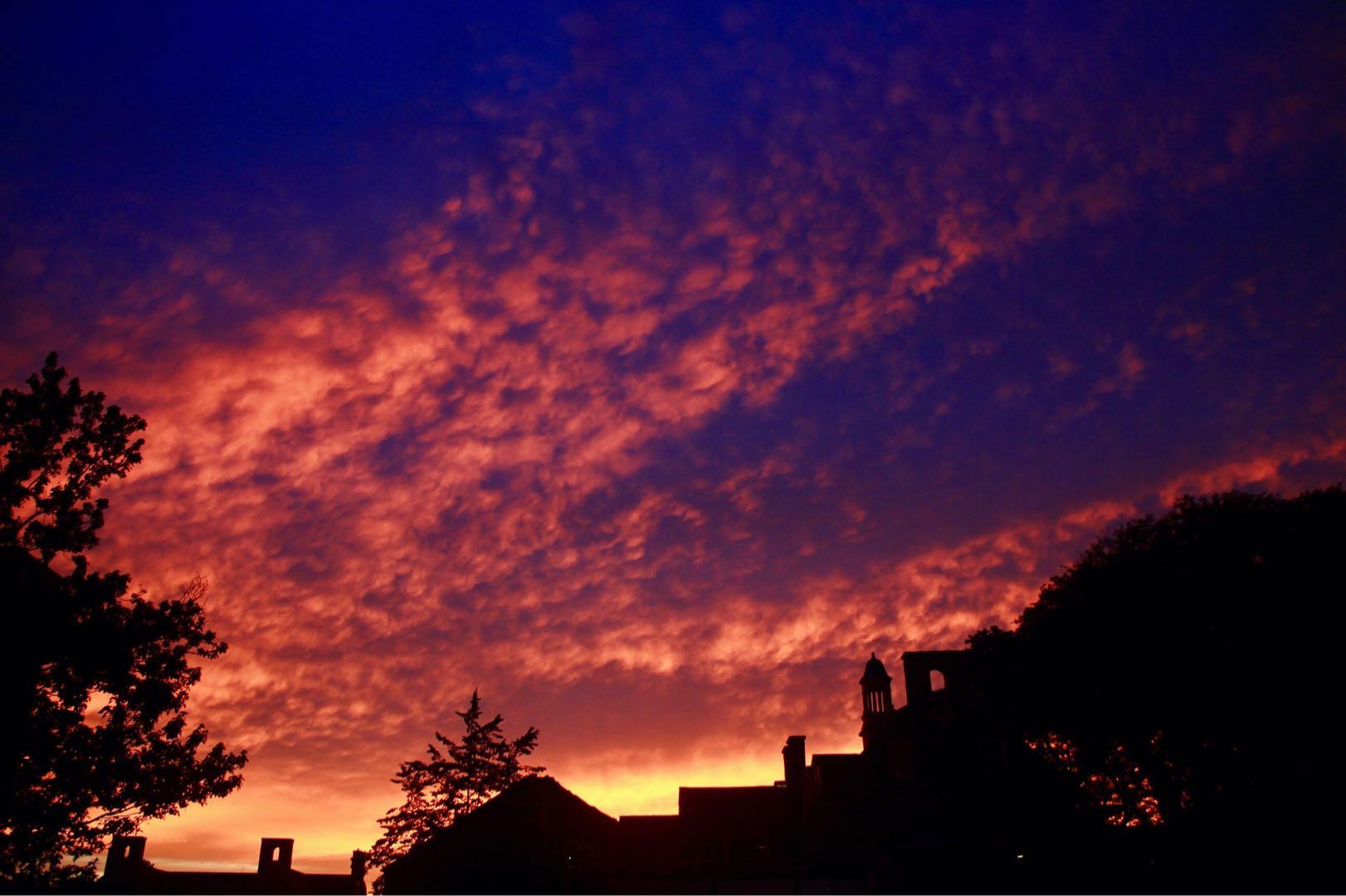 Sunset; Sharon Zhou