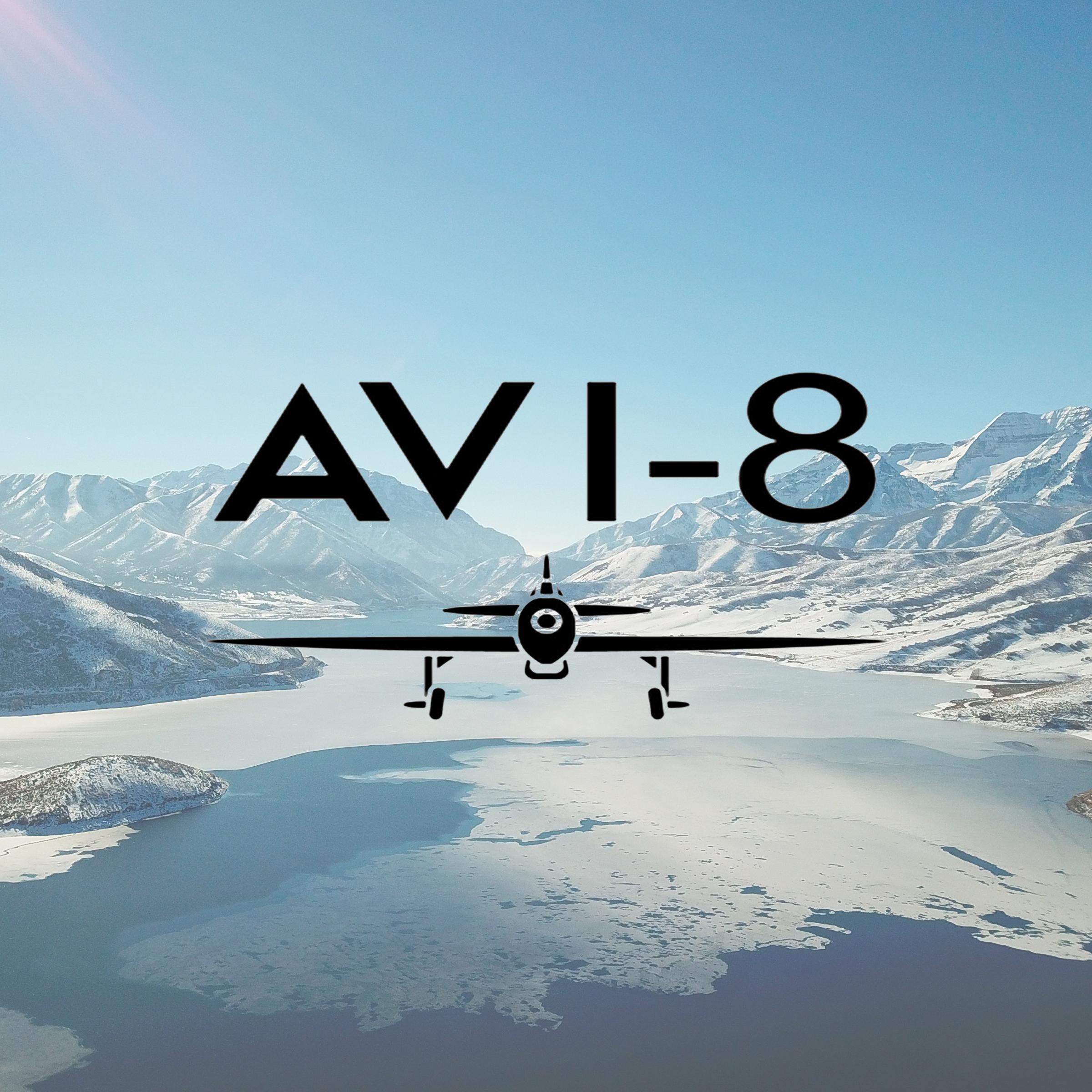 AVI 8.jpg