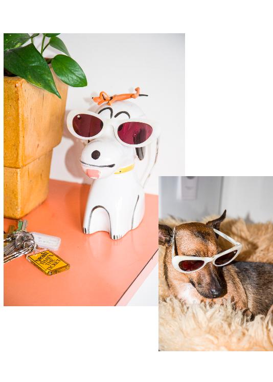 Coco & Snoopy wear ~ POMS Nuovo Sunglasses