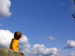 look-a-plane-1535819-300x225.jpg