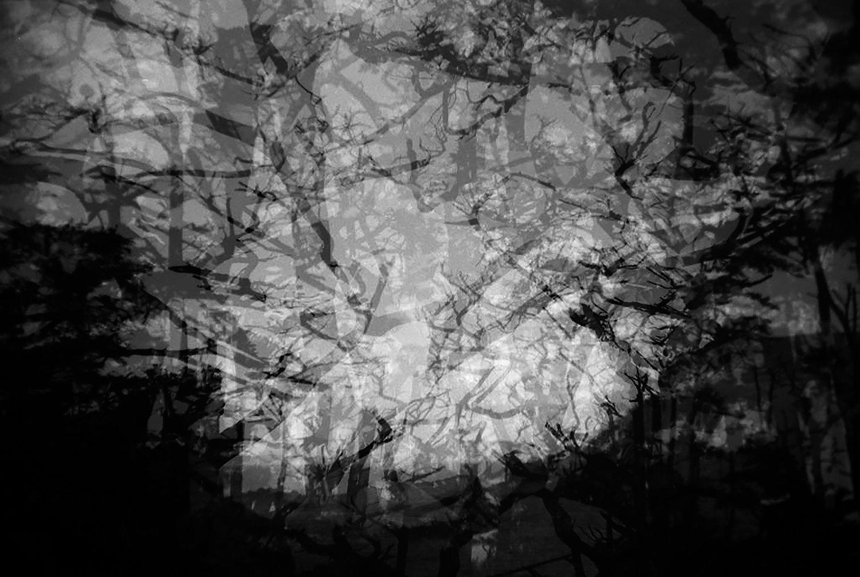 untitled-396.jpg