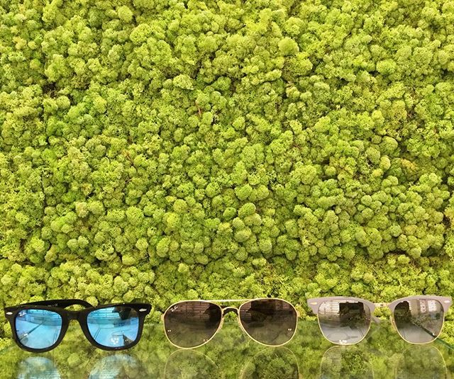 The snow is finally starting to melt! Get ready for the sunny weather by purchasing a frame from our new Ray Ban collection. There are multiple sunglass and ophthalmic frames to choose from. Pick up yours today and ask us about our custom prescription/sunglass lenses! #eighthavenueeyecare #wearedowntown #rayban #raybansunglasses #spring #eyecare