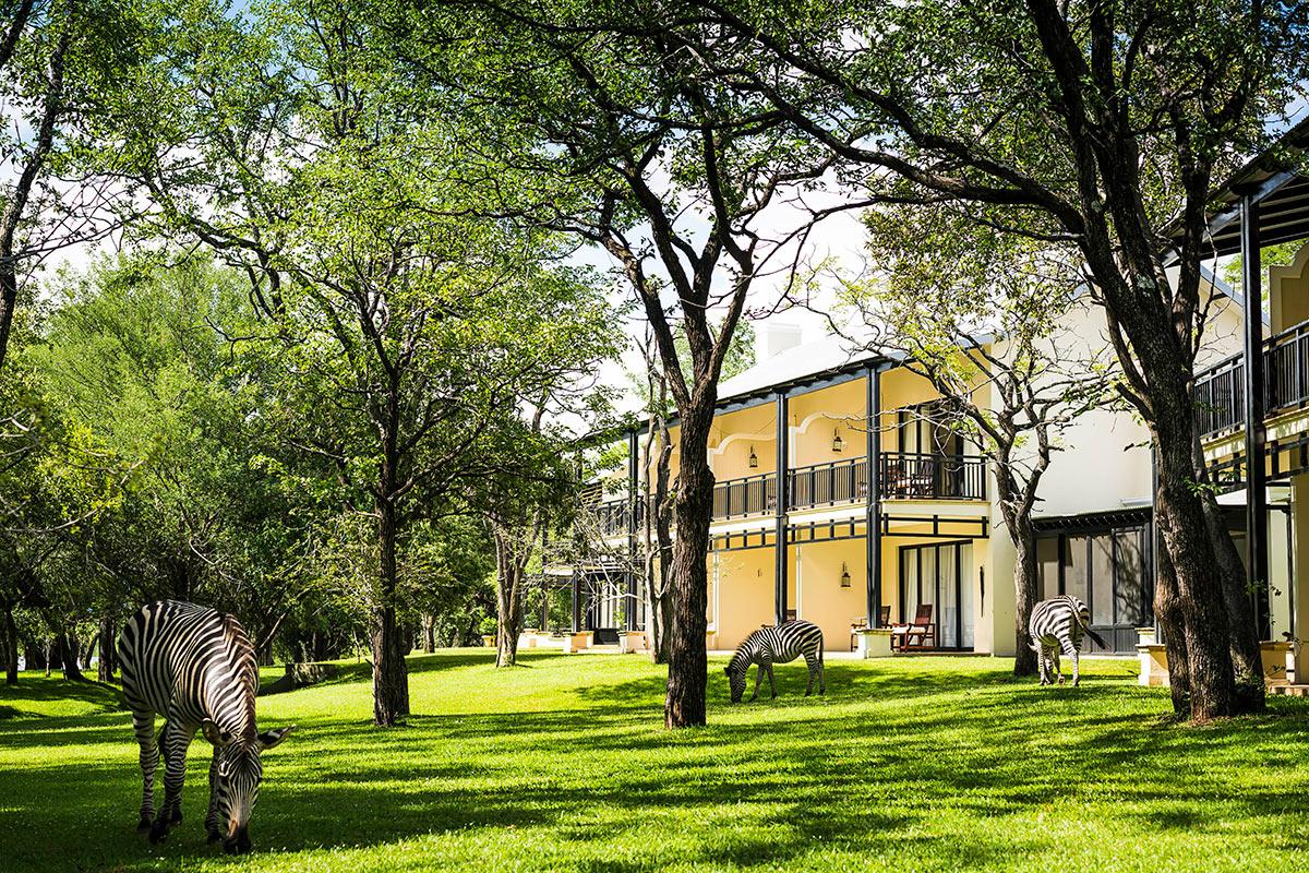 The-Royal-Livingstone-Anantara_Grounds-Zebra.jpg