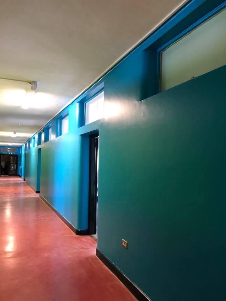 schools-painters-dunlin