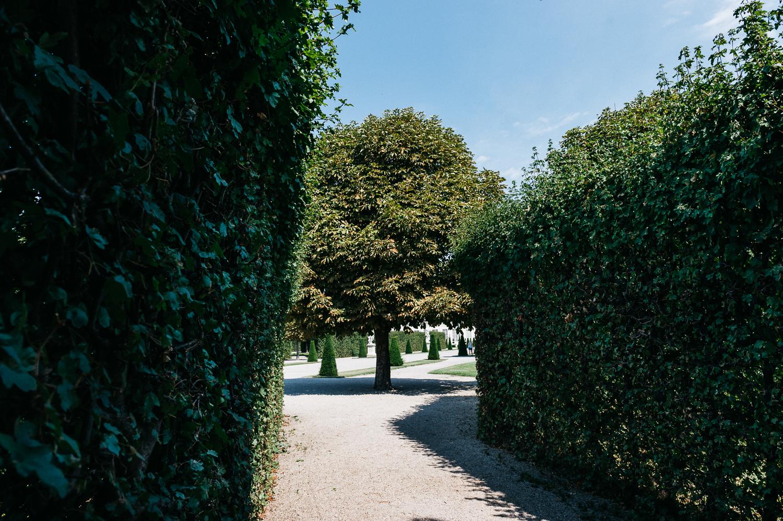 Belvedere.web-026.jpg