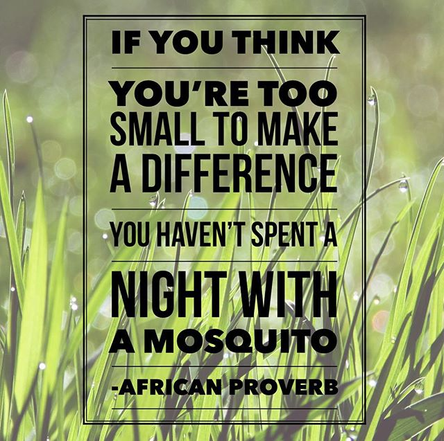 #liverad #inspiringkindness #wecanalldosomething #whatwillyoudo #giveback #serve #makeadifference #sharegoodness #motivationalmonday #mosquito #nevertoosmalltomakeadifference