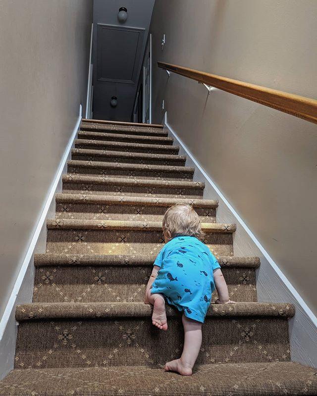 Mastering the stairs. . #ThatsourArlo #americatour2019 #babyworkout #milestone #climbbabyclimb #stairwaytothetop #strengthbuilding