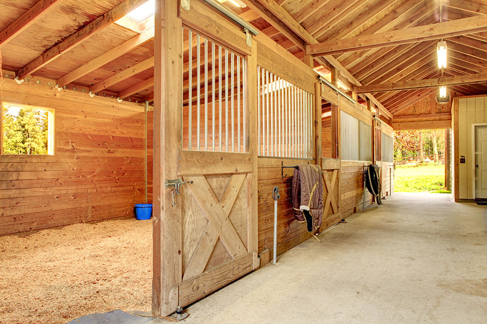 Livestock Bedding & Horse Bedding