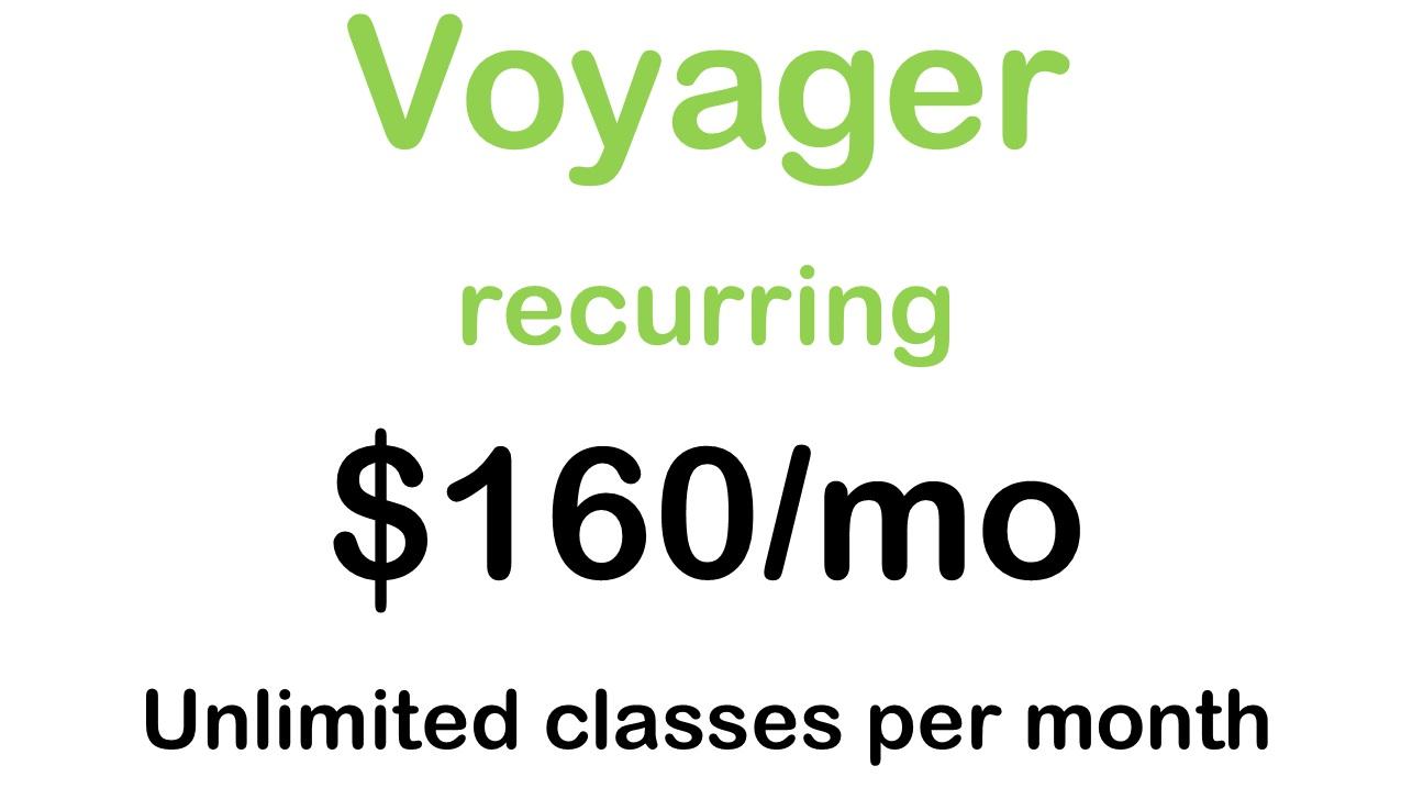 voyager160.jpg