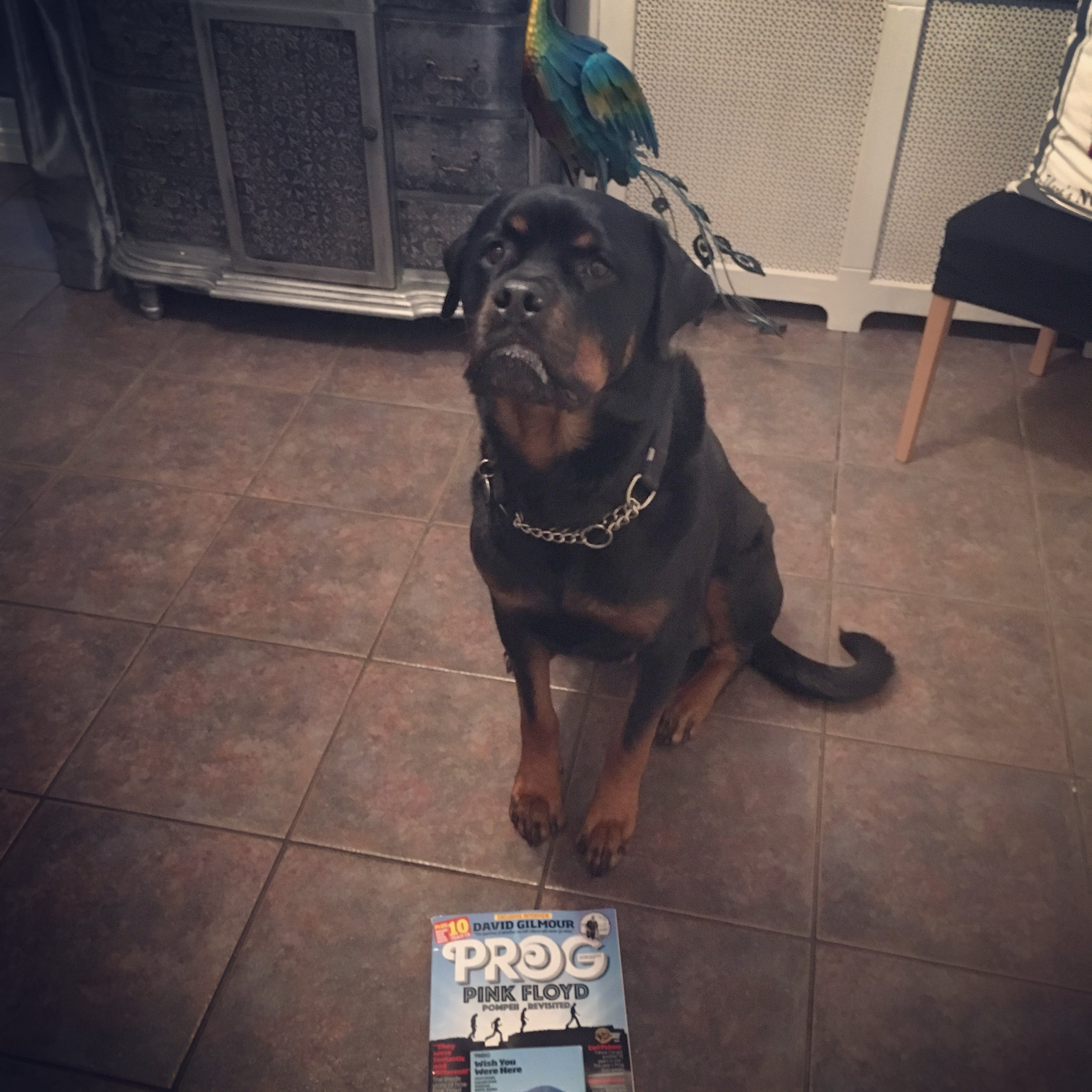 Keefa with Prog magazine - CIRCU5