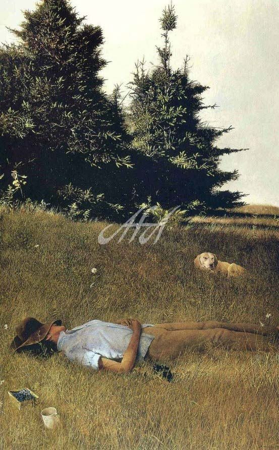 Wyeth_Napping watermark.jpg