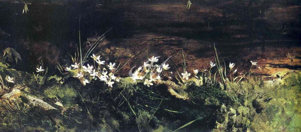 Wyeth_Flowers watermark.jpg