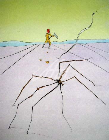 Dali_The Weaver Spider watermark.jpg