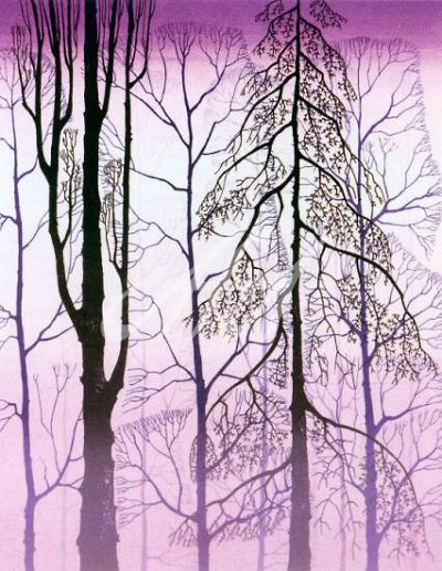 Earle_Winter Woods watermark.jpg
