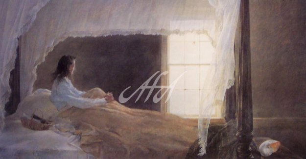 Andrew_Wyeth_Chambered_Nautilus_HS_2002 watermark.jpg