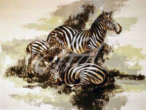 Zebra-Family-12-300x226 watermark.jpg