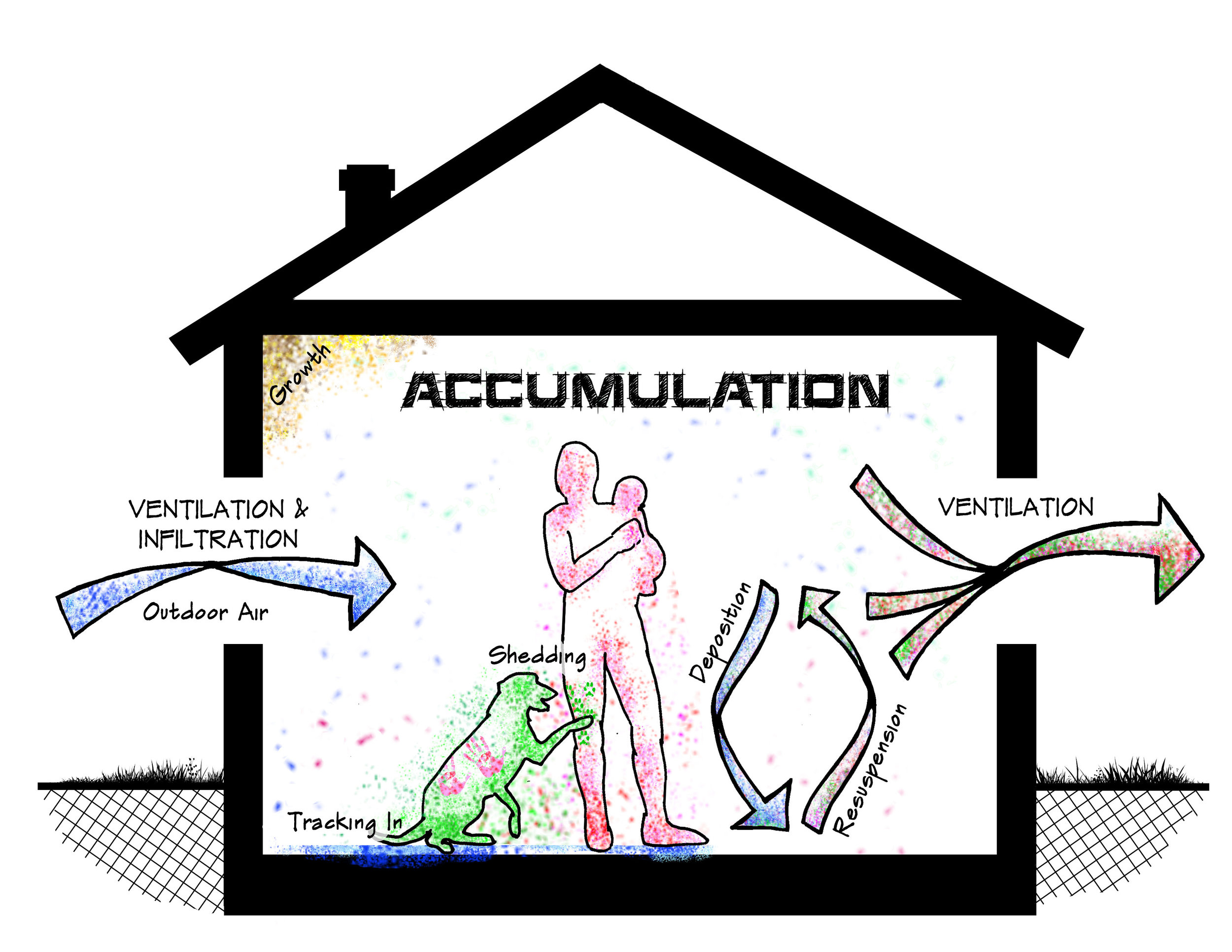 Sources and Physical Processes that Govern Assembly of Indoor Microbial Communities. Other potential sources of microbes may include emission from plants, food, and plumbing.