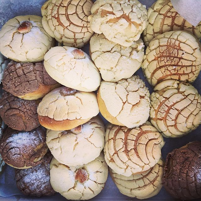 Delicious pan dulce for sale out front today! Come grab a couple (plus coffee) en route to #TucsonMeetYourself! #downtowntucson #ourplaceclubhouse