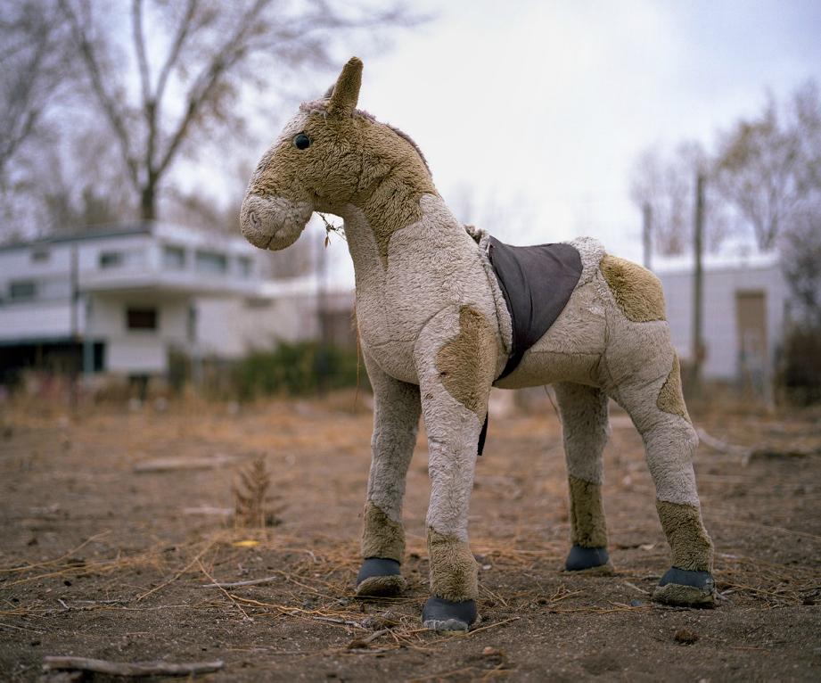 """A Little horse"" Alisha Funkhouser"