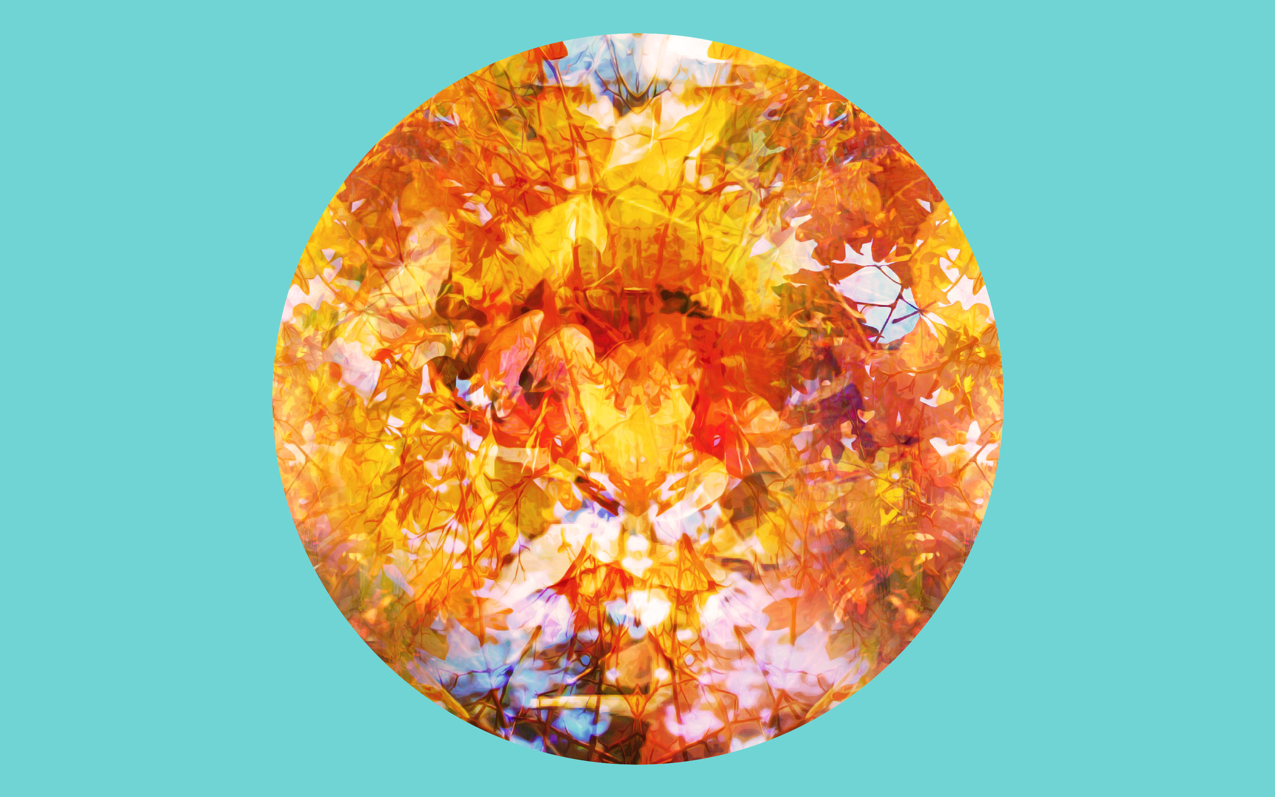 Autumn Till.jpg