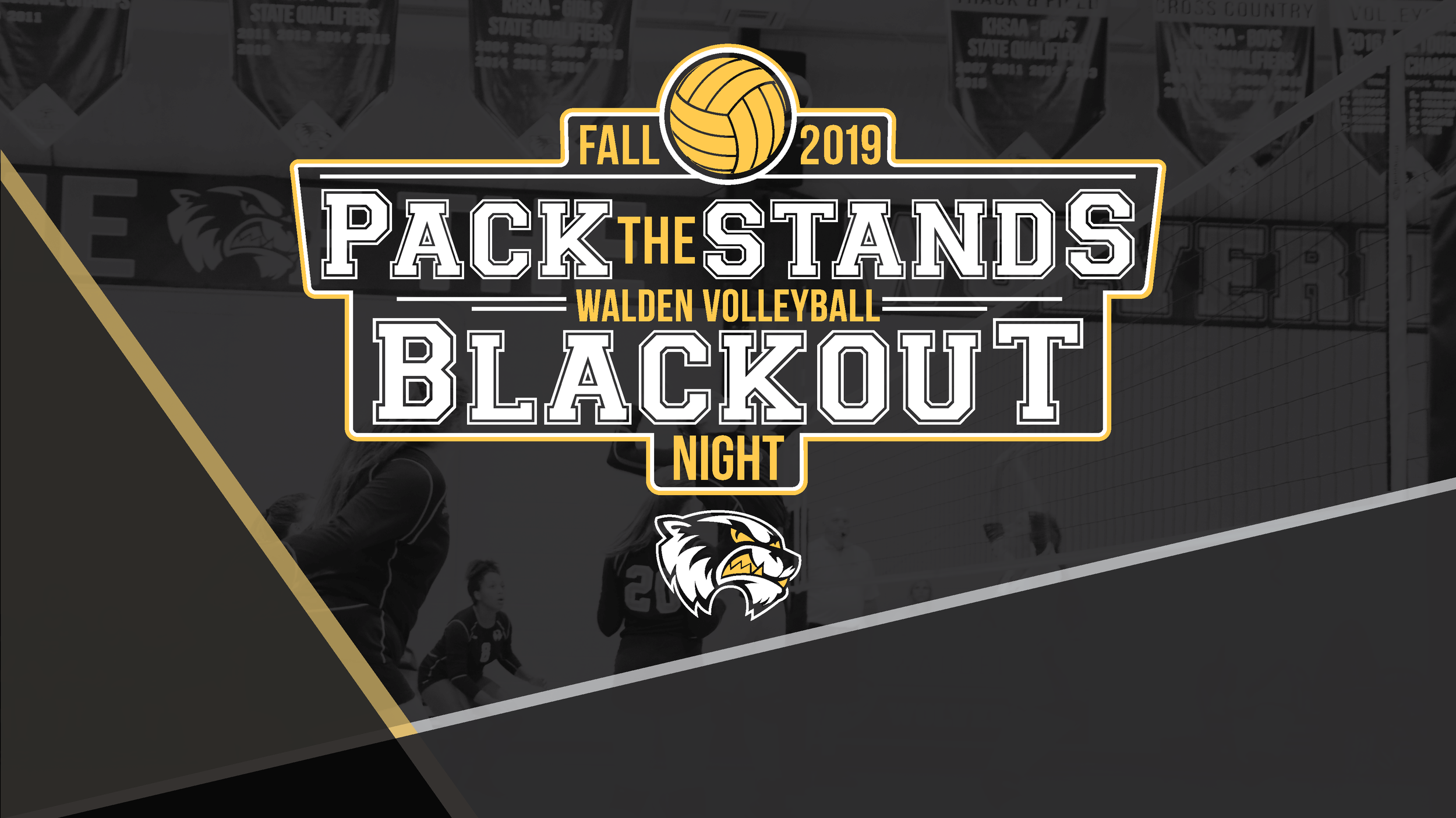Pack the Stands_Blackout_Volleyball matches2.png