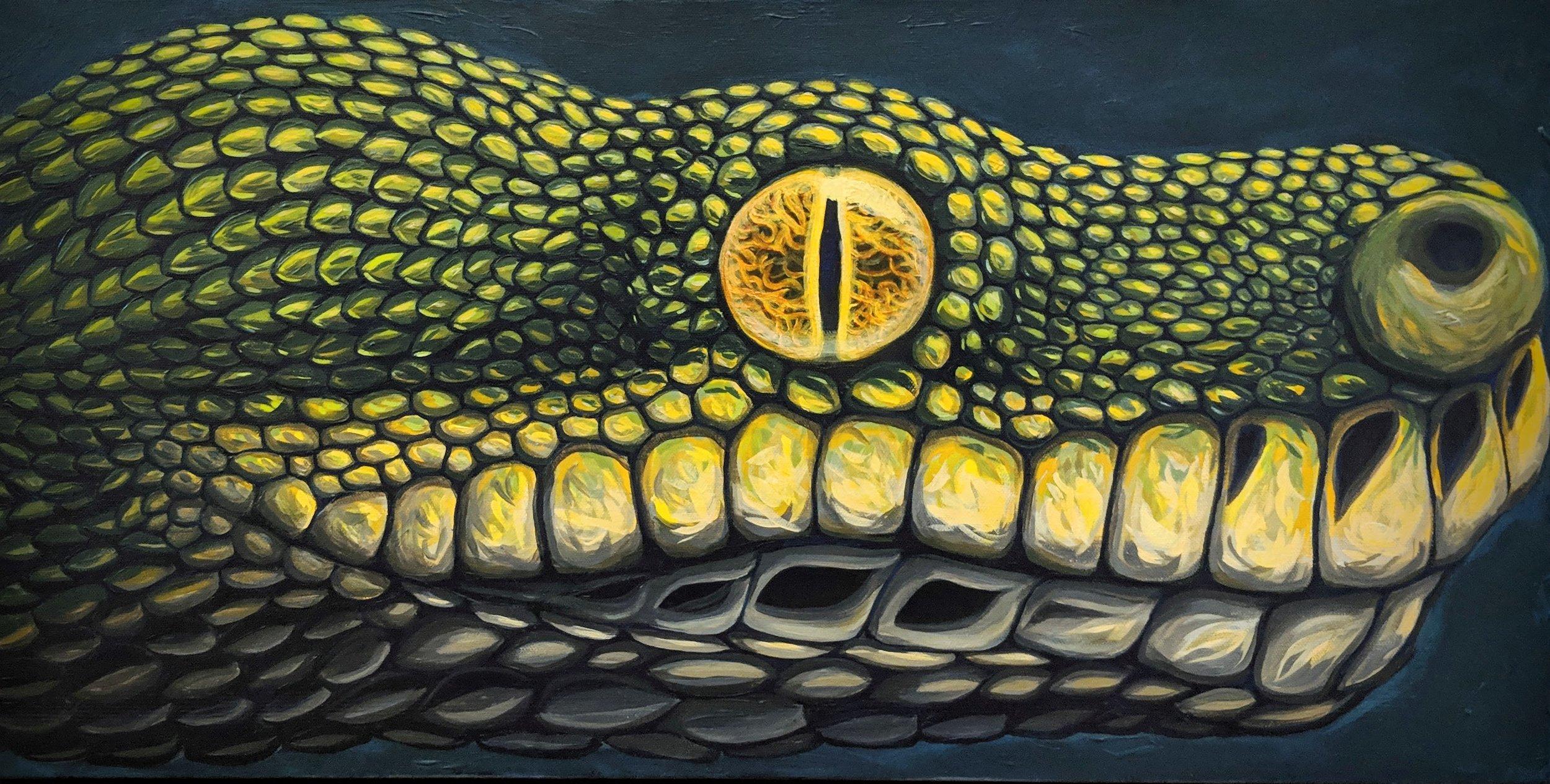 "Morelia viridis  Green Tree Python Acrylic paint on 30""x15"" canvas"