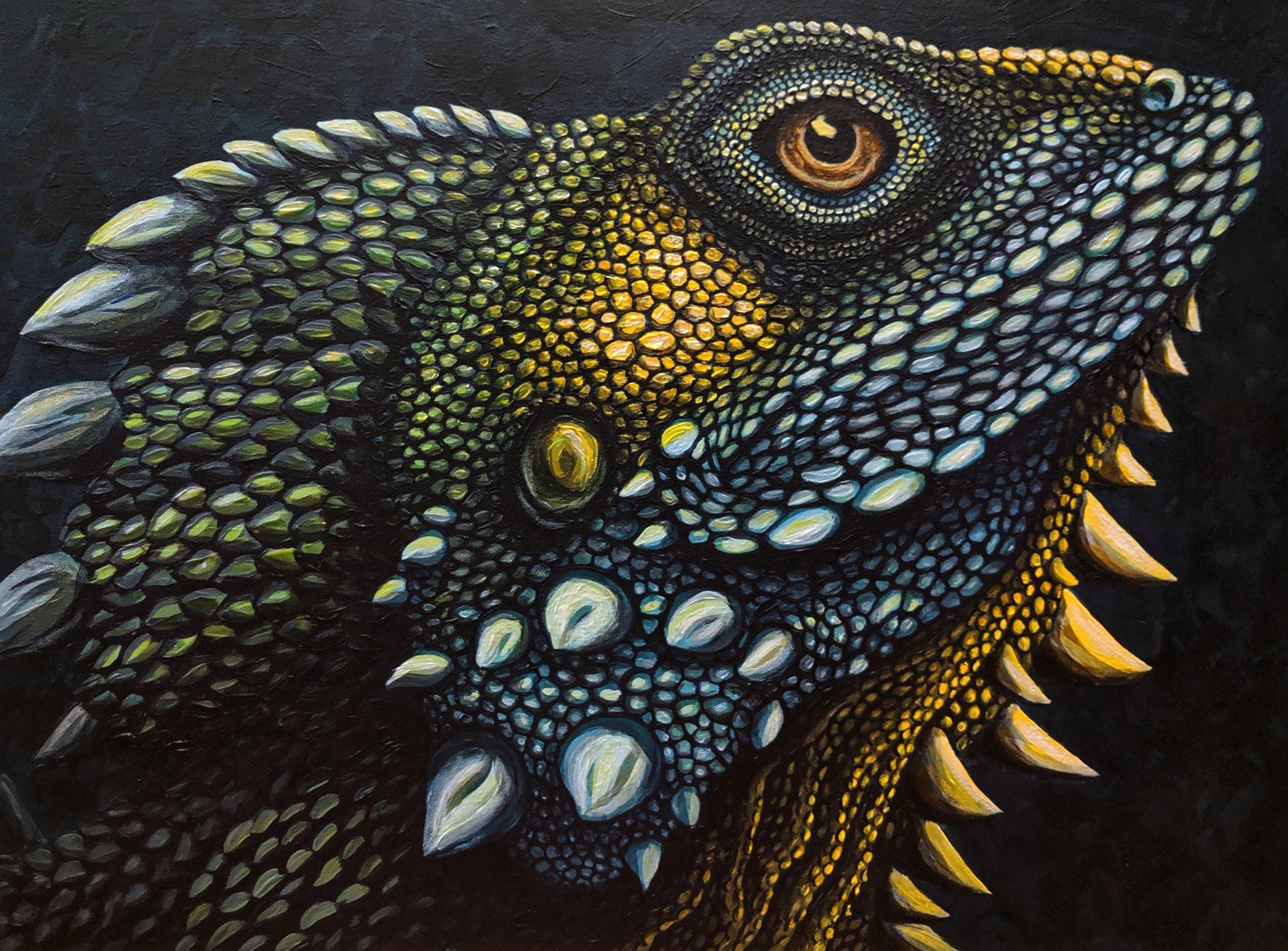 """Lophosaurus boydii  Boyd's Forest Dragon Acrylic paint on 24""""x18"""" canvas   Prints available"""