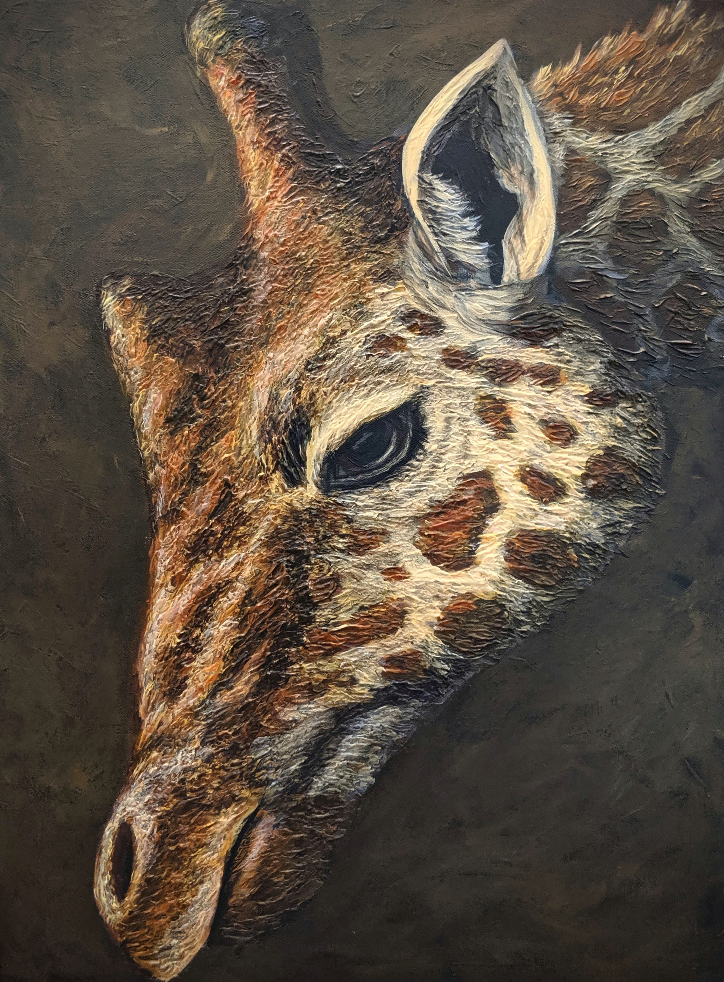 "Giraffa camelopardalis reticulata  Reticulated giraffe Acrylic paint on 18""x24"" canvas   Prints available"