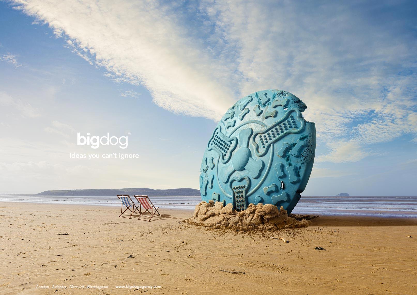 Big Dog - Frisbee