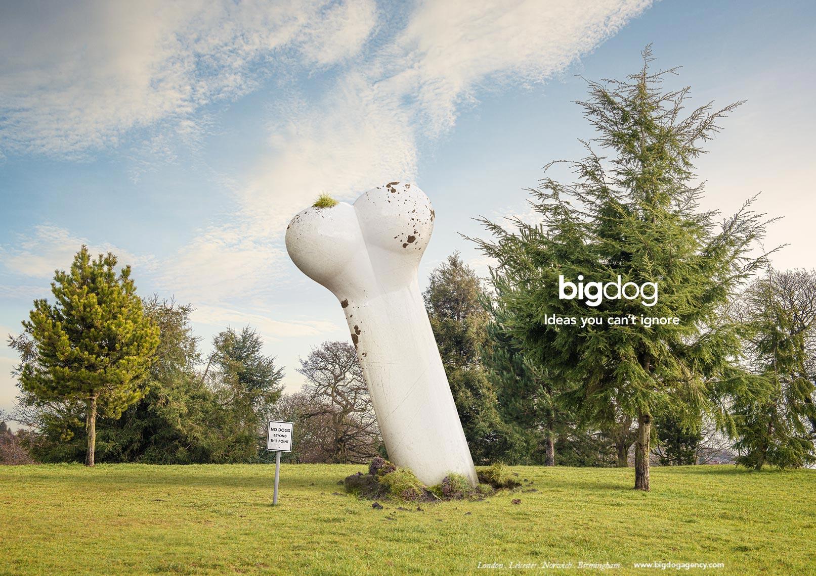 Big Dog - Bone