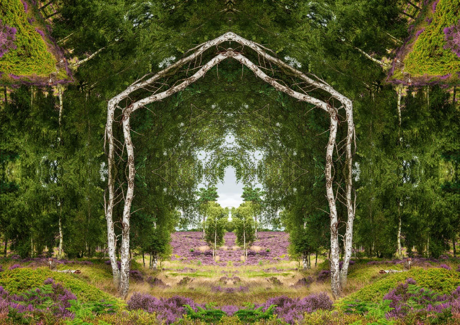 Spring Portal 1