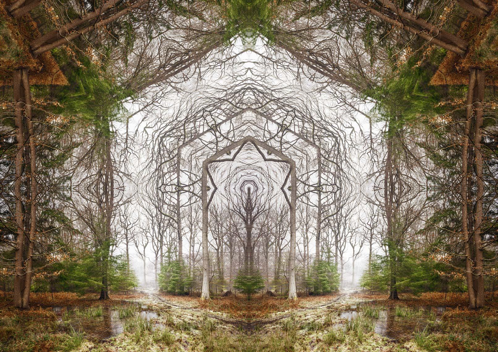 Winter Portal 1