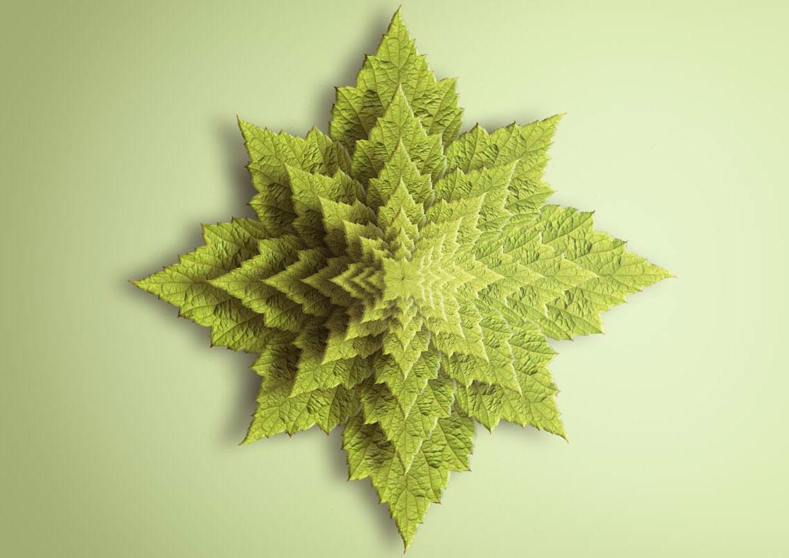 Spiky Leaf Fractal