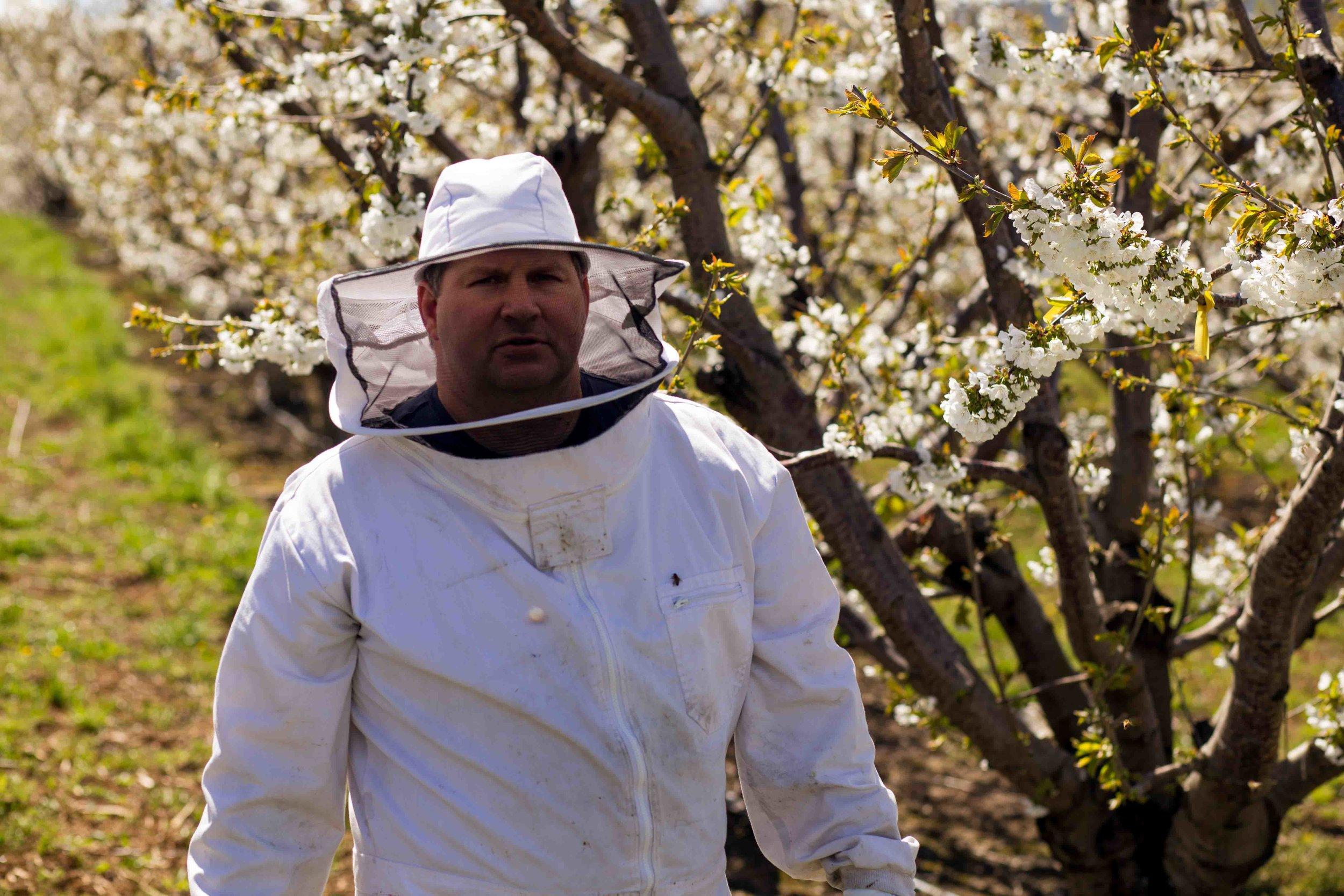 contact columbia gorge honey