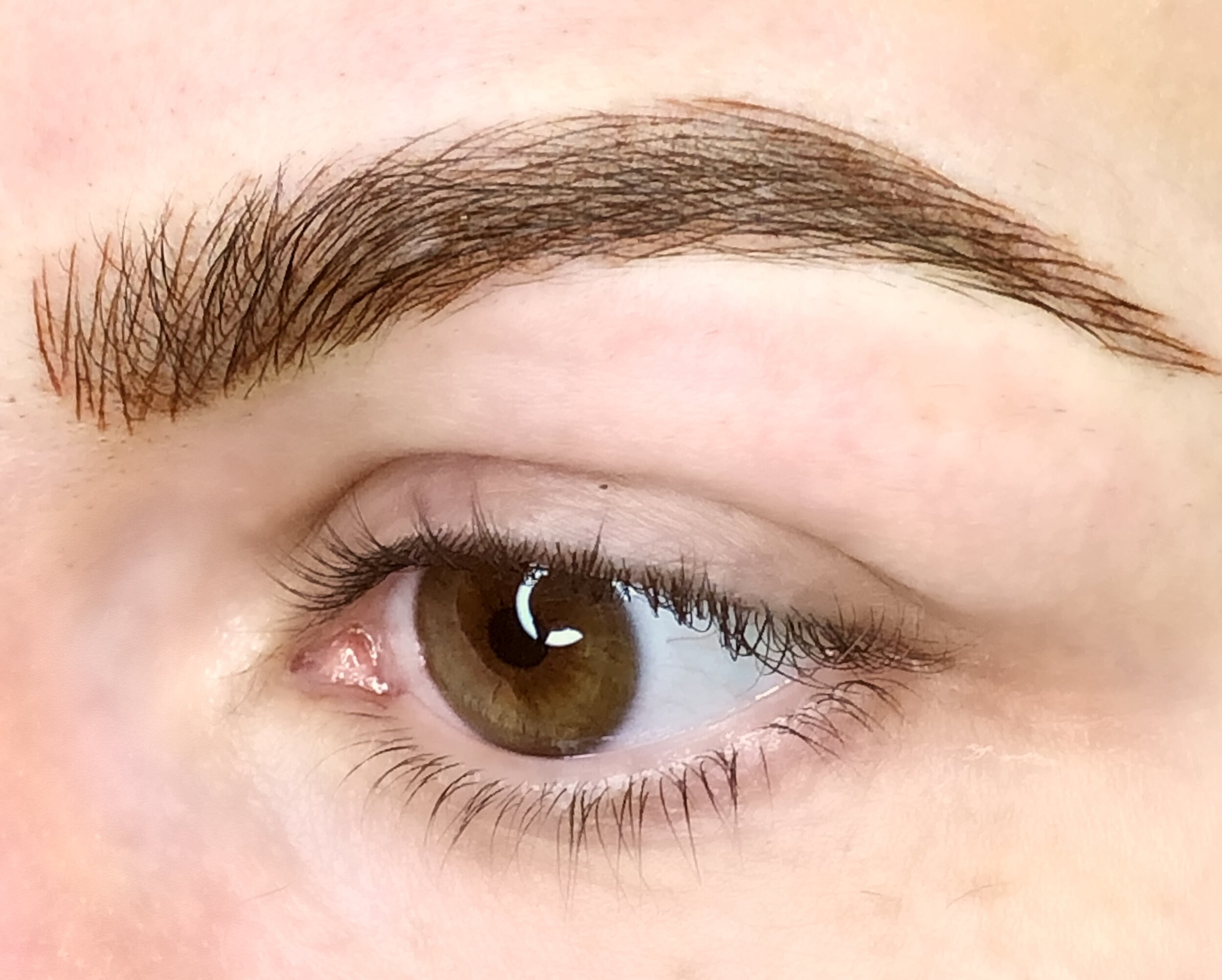 Permanent Makeup Eyebrows Eyebrow