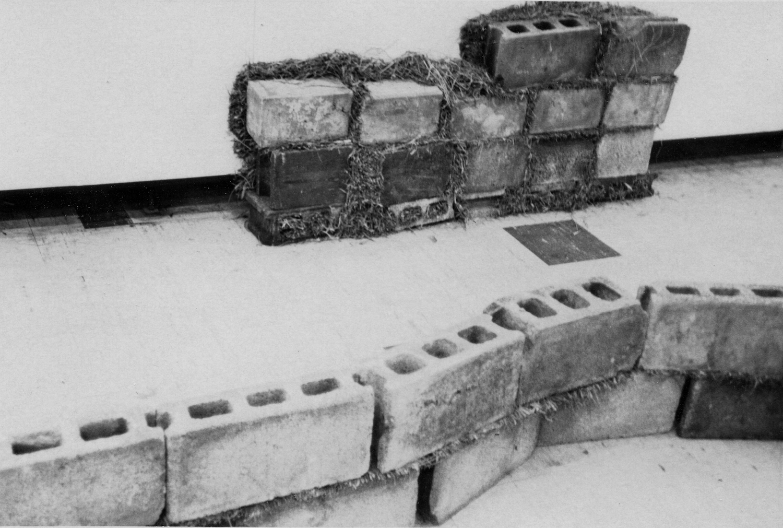 Units of Dependency ,1974 依存位 ( Izon'i ) Concrete blocks, grass imensions variable Installation view,Tamura Gallery, Tokyo, 1974 Photo: Kishio Suga