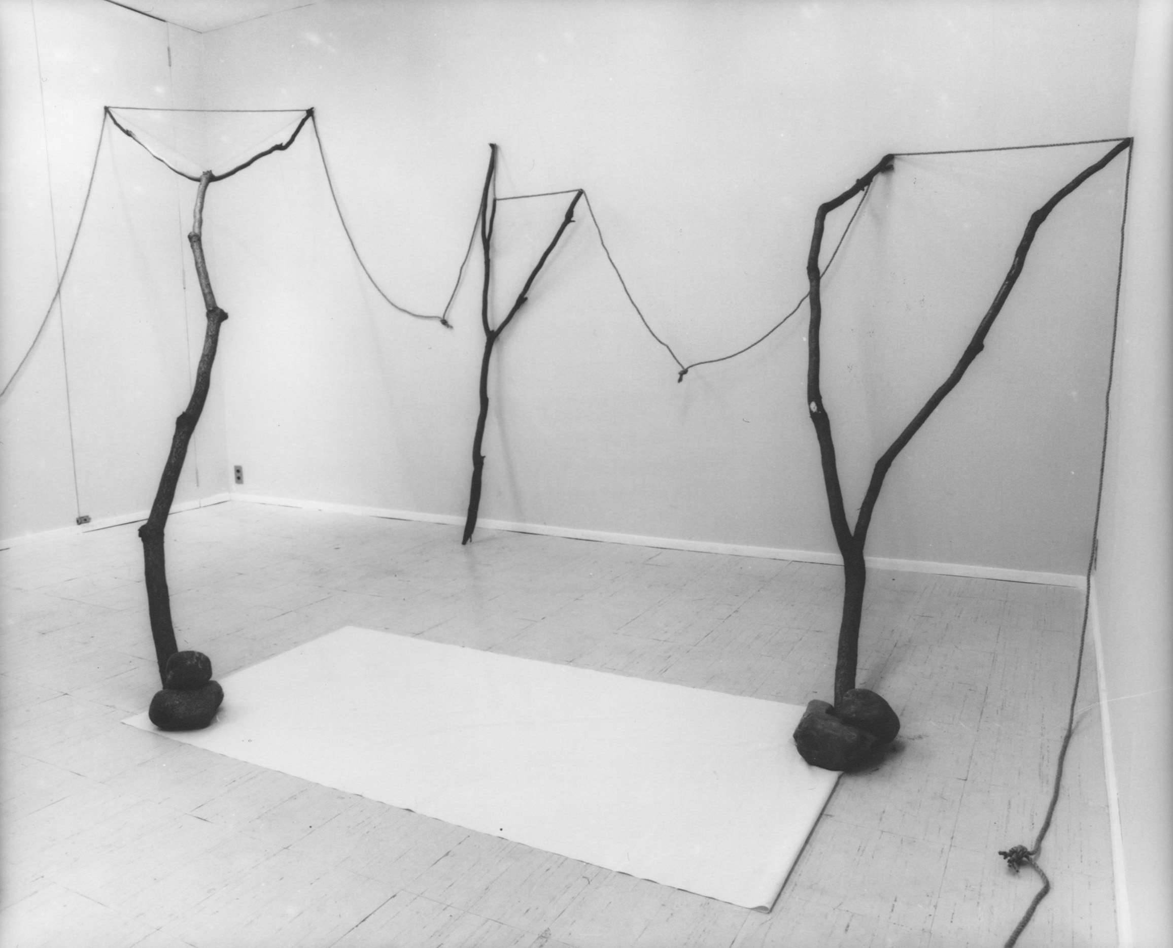 Continuous Existence , 1977 連界 ( Renkai ) Rope, branches, stones, paper Dimensions variable Installation view, Shin Tamura Gallery, Tokyo, 1977 Photo: Shigeo Anzaï