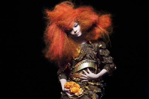 Biophilia  saw Björk embrace new technologies to create her sound
